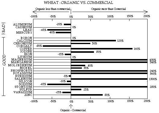 Wheat: Organic vs. Commercial