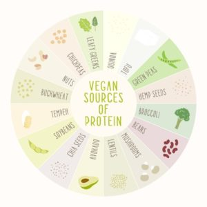 37590098 - vegan sources of protein