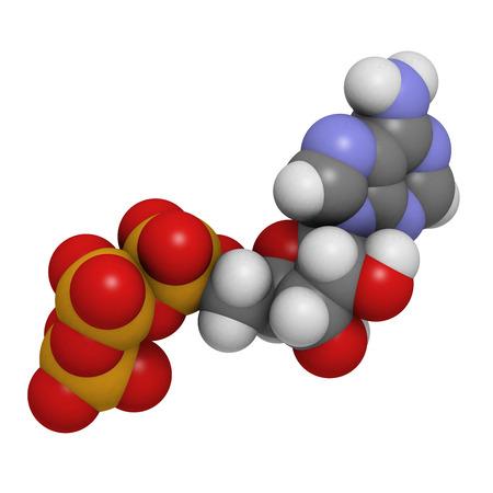 36966274 - adenosine triphosphate (atp)