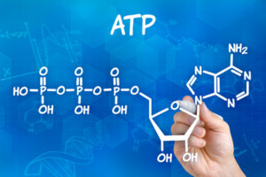 59198302 -chemical formula of ATP
