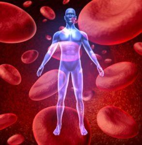 10743736 - blood circulation