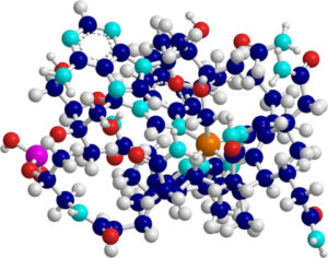 Vitamin B-12 Molecule