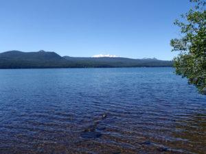 klamath lake, blue green algae