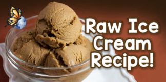 Matt Monarch's Raw Ice Cream