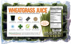 DynamicGreen Frozen Wheatgrass Juice