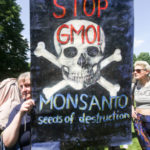 57066115 - 5/21/16, Croatia protesters with stop Monsanto sign