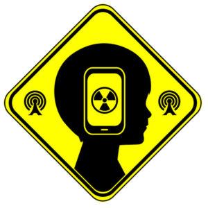 44980406 - electromagnetic fields (EMF)