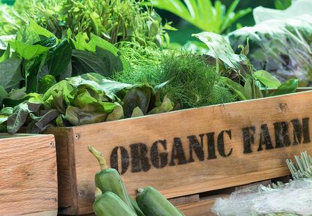 50734510 - organic produce