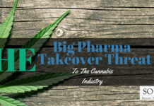 Big Pharma Header